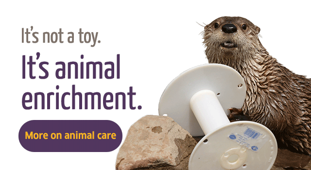It's not a toy. It's animal enrichment.