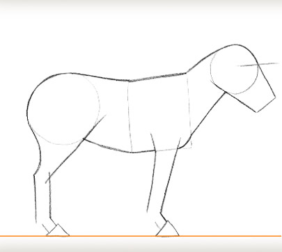 how to draw a zebra for kids