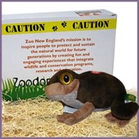 toad.zoodopt Box