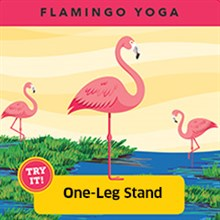 Flamingoyoga Box