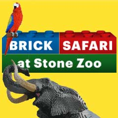 Brick Safari Box
