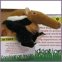 Anteater Zoodopt