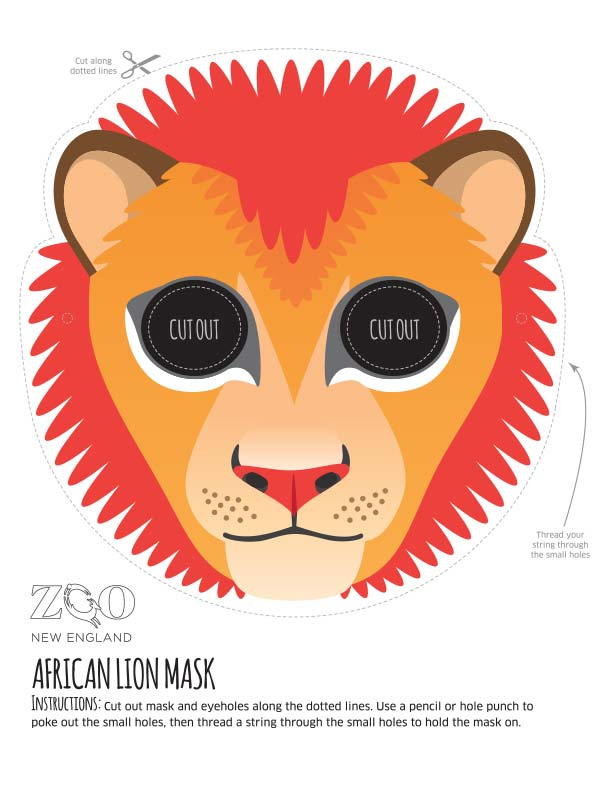 African Lion Mask Zoo New Englad