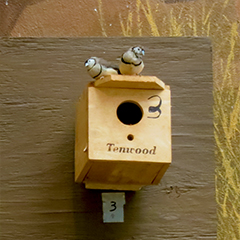 Finches2